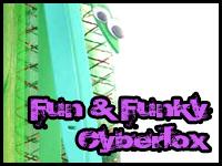 Fun & Funky Cyberlox