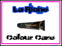 La Riche Directions Colour Care