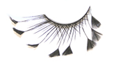 Stargazer False Eyelashes #60 (Black Angled Feathers)
