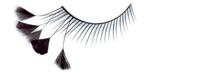 Stargazer False Eyelashes #44 (Black with Black Feathers)