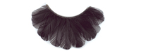 Stargazer False Eyelashes #45 (Black Feathers)
