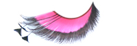 Stargazer False Eyelashes #53 (Pink & Black with Black Feathers)