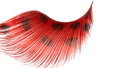 Stargazer False Eyelashes #66 (Extra Long Red with Black Spots)